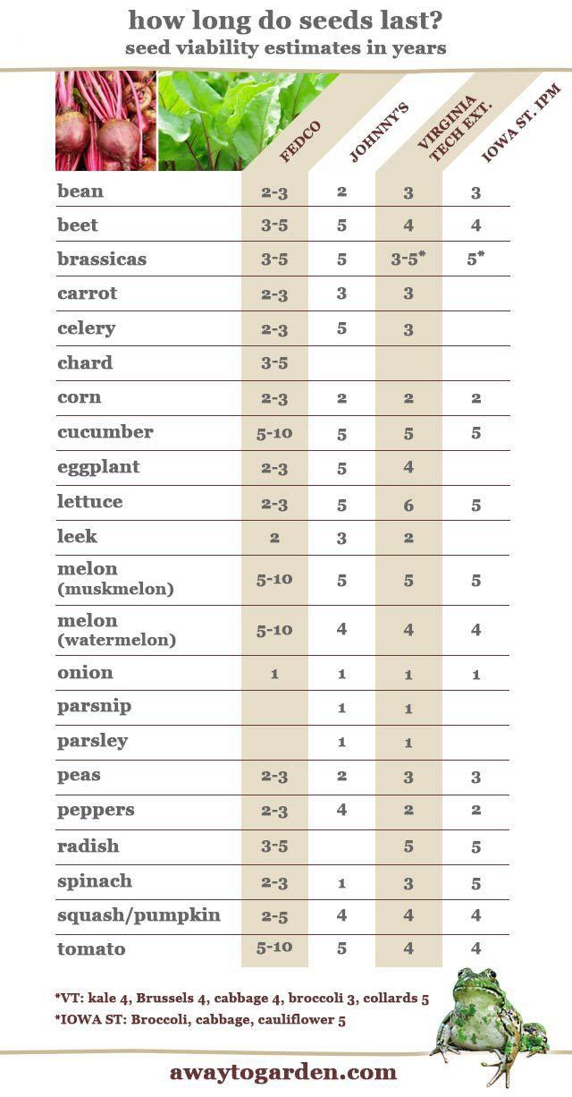 ¿Qué tan frescas son las semillas sobrantes? Viabilidad y vigor