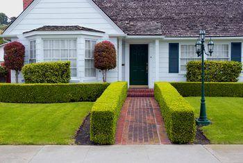 Cuatro fha directrices de calificación a considerar antes de comprar una casa