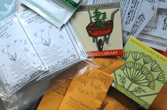 Mi pedido de semillas de 2013, pesado en las leguminosas
