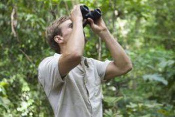 ¿Cuáles son los objetivos del ecoturismo?
