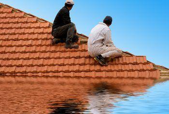 Compare el seguro contra inundaciones