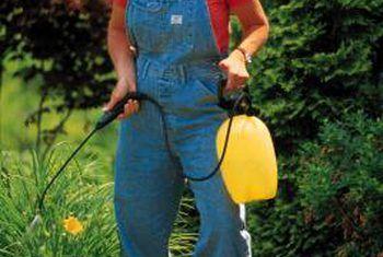 Diferencia en fertilizantes completos y balanceados